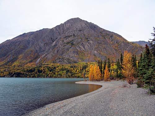 lake shore in Alaska