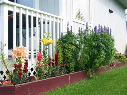 small flower garden in front of porch