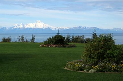 nice lawn in Alaska