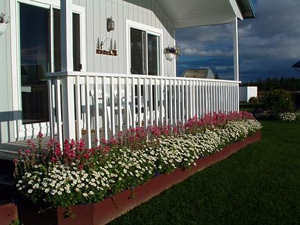 flower bed on cottage