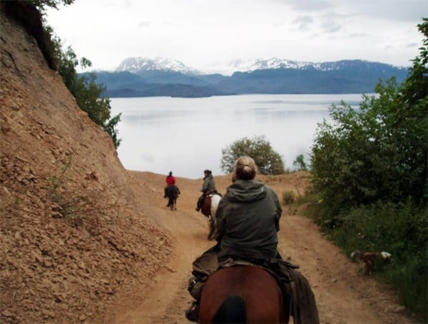 people riding horses on a trail in Alaska