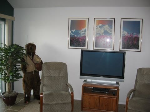 living room with TV in cottage