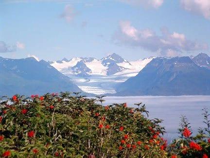 scenic Alaska mountain range overlook