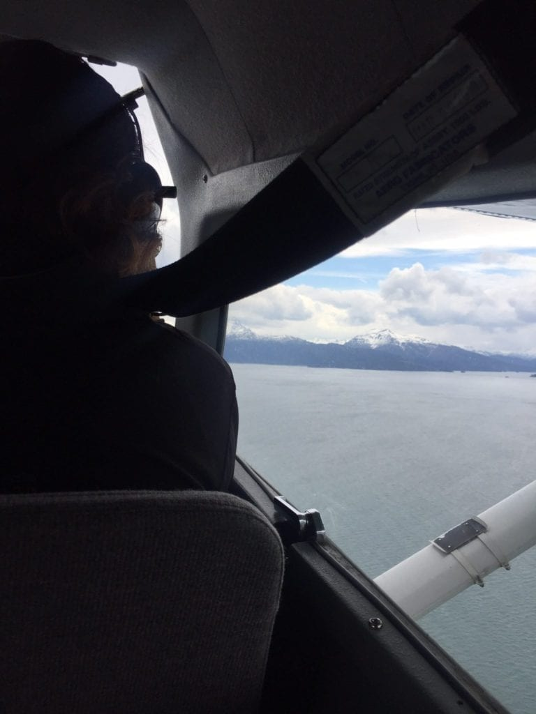 view of Cook Inlet from airplane