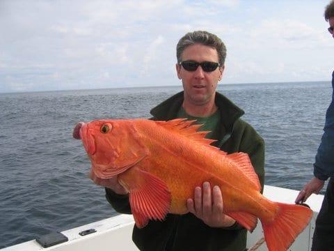 man holding large orange fish