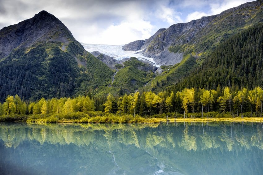 trees and mountains mirror reflection in Alaska lake