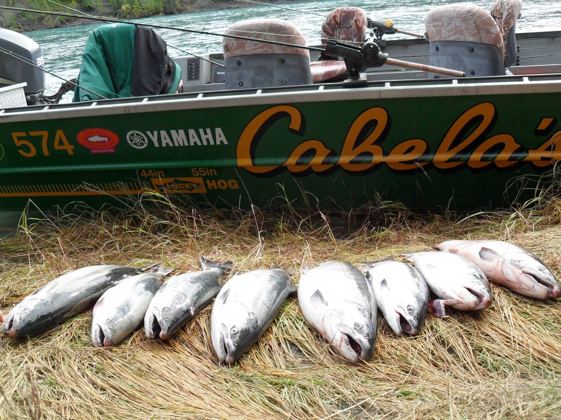 caught fish lined up in front of fishing boat